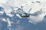 J-5021 - Switzerland - Air Force McDonnell Douglas F/A-18C Hornet aircraft