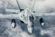 C.15-30 - Spain - Air Force McDonnell Douglas EF-18A Hornet aircraft