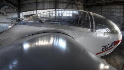 SP-3879 - Aeroklub Warszawski PZL SZD-9 Bocian