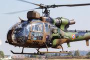 F-MGBW - France - Army Aerospatiale SA-341 / 342 Gazelle (all models) aircraft