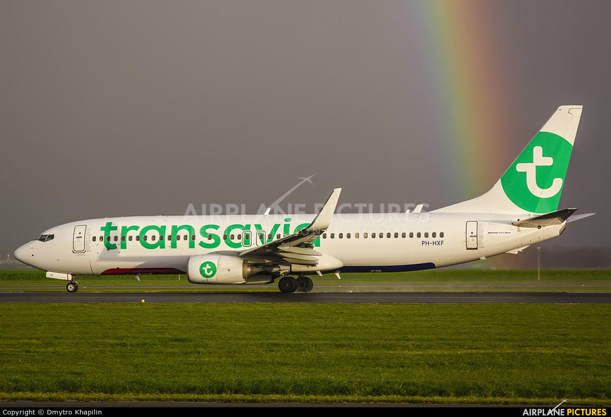 Transavia PH-HXF aircraft at Amsterdam - Schiphol