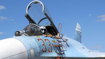 33 - Belarus - Air Force Sukhoi Su-27 aircraft