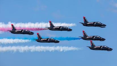 - - Patriots Jet Team Aero L-39C Albatros