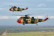 Belgium AF Sea Kings farewell tour title=