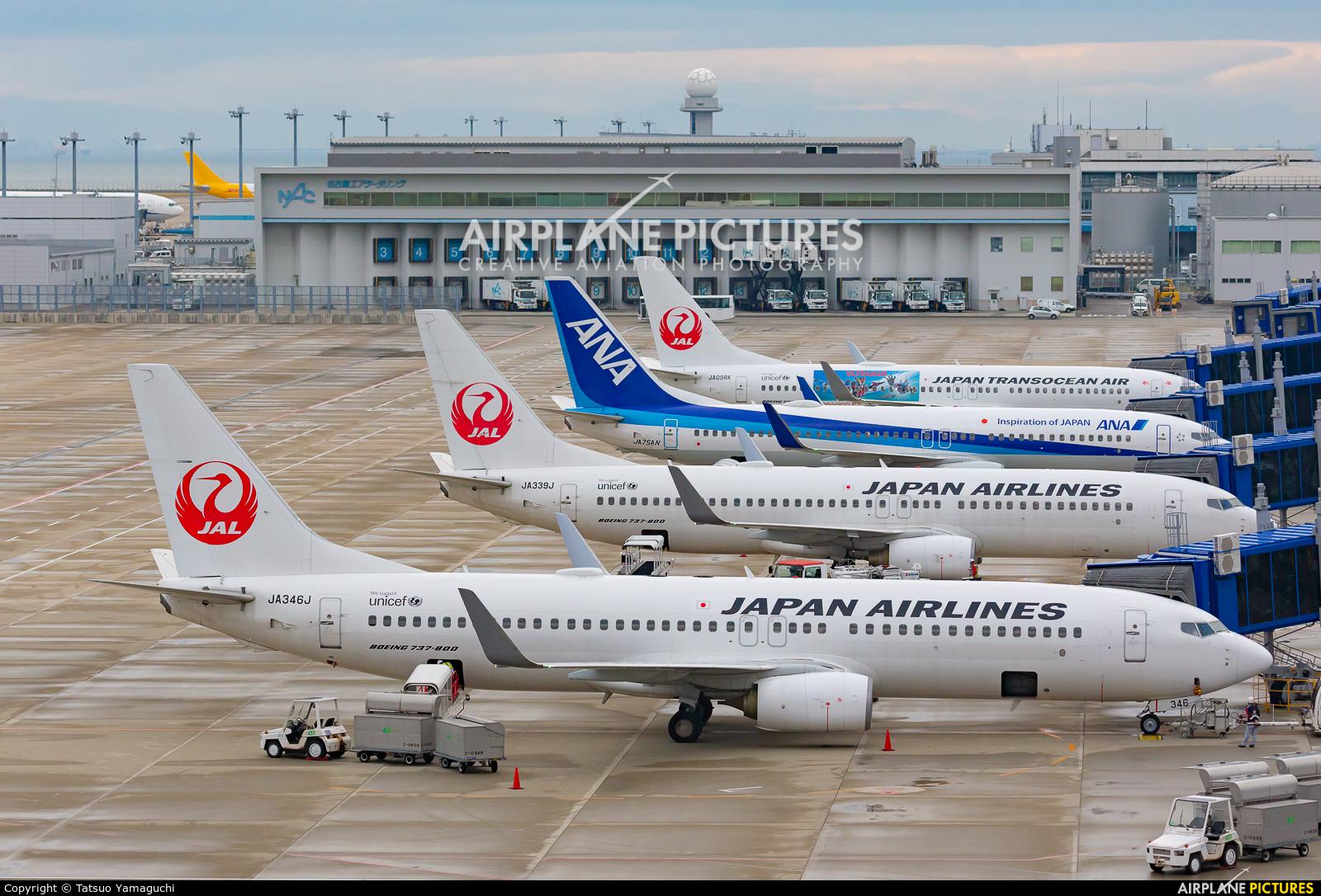 JAL - Japan Airlines JA346J aircraft at Chubu Centrair Intl