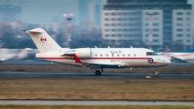144617 - Canada - Air Force Canadair CC-144 Challenger aircraft