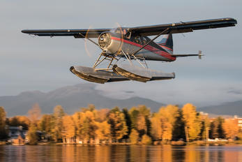 N995SP -  de Havilland Canada DHC-2 Beaver