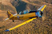 N421QB - Commemorative Air Force Canadian Car & Foundry Harvard aircraft