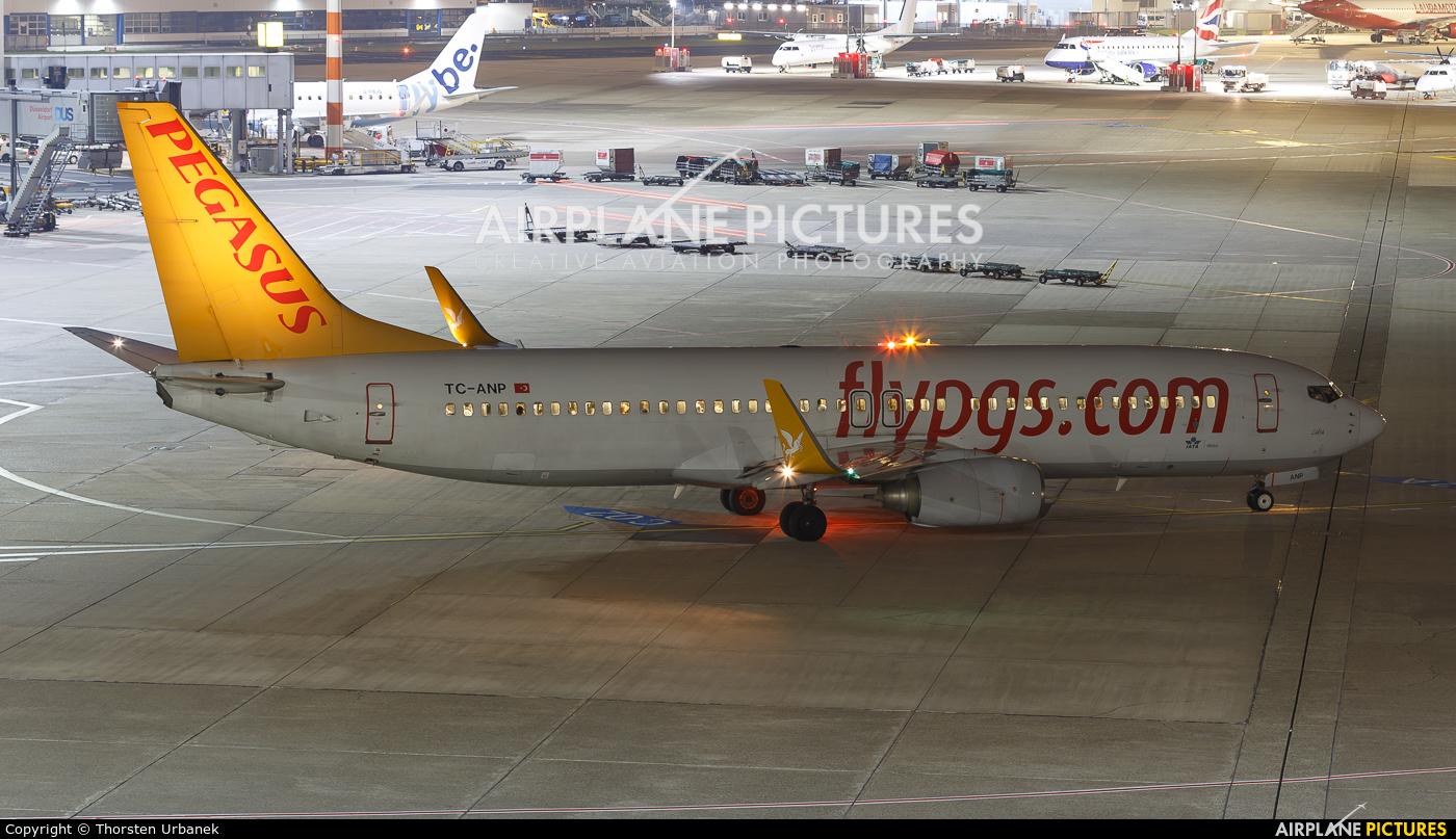 Pegasus TC-ANP aircraft at Düsseldorf