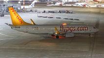 TC-ANP - Pegasus Boeing 737-800 aircraft
