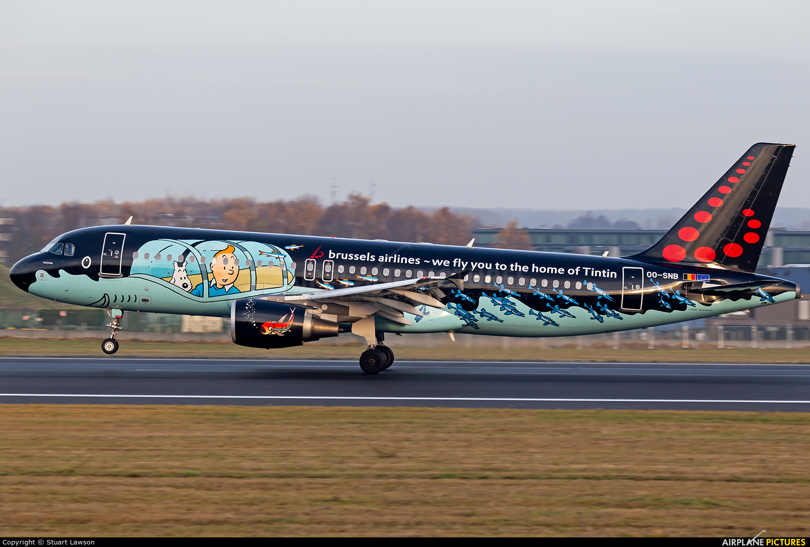 Brussels Airlines OO-SNB aircraft at Brussels - Zaventem