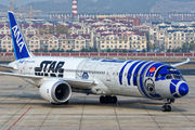 JA873A - ANA - All Nippon Airways - Airport Overview - Photography Location aircraft