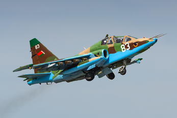 83 - Belarus - Air Force Sukhoi Su-25UB