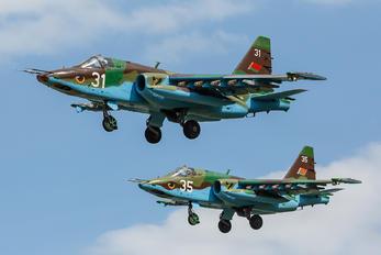 31 - Belarus - Air Force Sukhoi Su-25