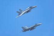 - - USA - Navy McDonnell Douglas F/A-18E Super Hornet aircraft