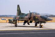4507 - Mexico - Air Force Northrop F-5E Tiger II aircraft