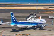 ANA - All Nippon Airways JA111A image