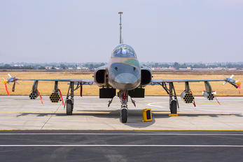 4507 - Mexico - Air Force Northrop F-5E Tiger II