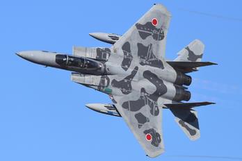 92-8098 - Japan - Air Self Defence Force Mitsubishi F-15DJ