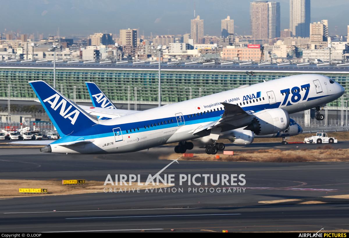 - Airport Overview JA817A aircraft at Tokyo - Haneda Intl