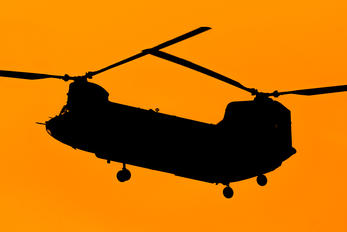 14-08162 - USA - Army Boeing CH-47F Chinook