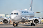 JA336J - JAL - Japan Airlines Boeing 737-800 aircraft