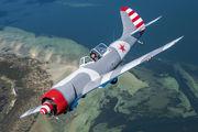 VH-YKN - Private Yakovlev Yak-50 aircraft
