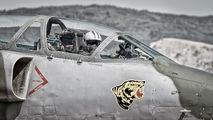 25528 - Serbia - Air Force Soko NJ-22 Orao aircraft