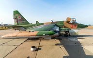 04 - Russia - Air Force Sukhoi Su-25 aircraft