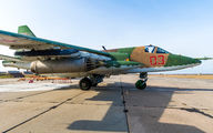 03 - Russia - Air Force Sukhoi Su-25 aircraft