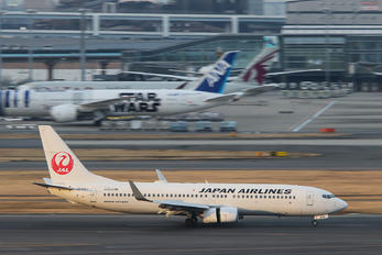 JA338J - JAL - Japan Airlines Boeing 737-800