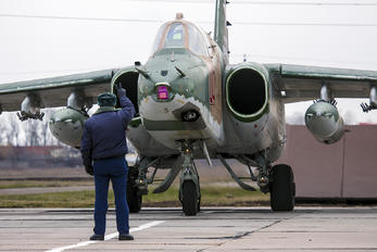 04 - Russia - Air Force Sukhoi Su-25