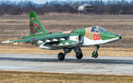 08 - Russia - Air Force Sukhoi Su-25 aircraft