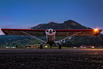 D-EFMZ - Private Aviat A-1 Husky