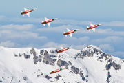 J-3088 - Switzerland - Air Force:  Patrouille de Suisse Northrop F-5E Tiger II aircraft