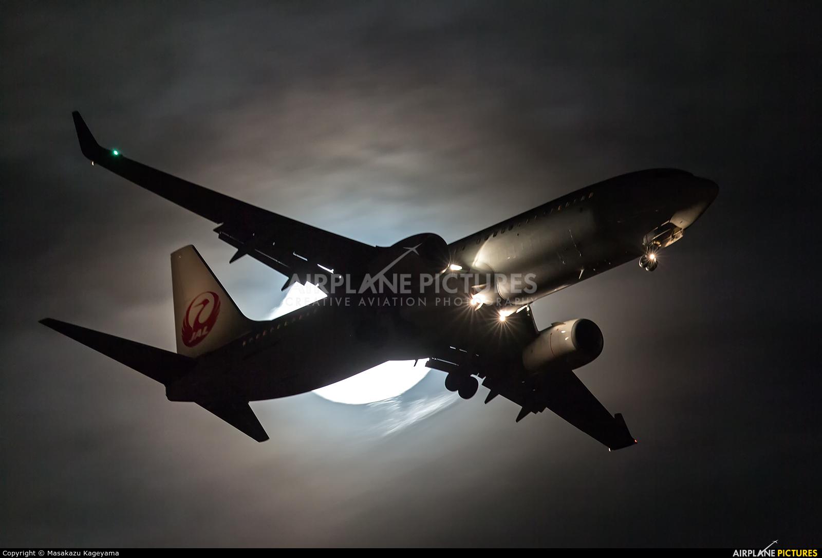JAL - Japan Airlines JA324J aircraft at Tokyo - Haneda Intl