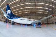 XA-MAG - Aeromexico Boeing 737-8 MAX aircraft
