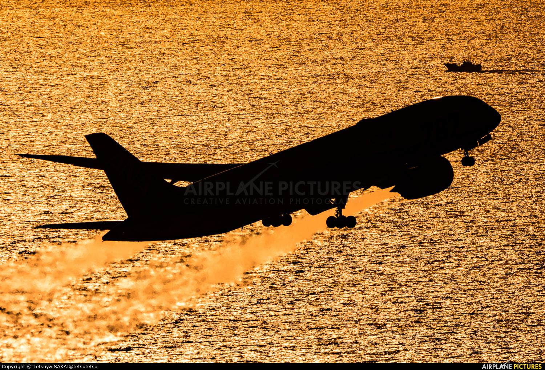 ANA - All Nippon Airways JA819A aircraft at Matsuyama