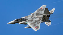 92-8098 - Japan - Air Self Defence Force Mitsubishi F-15DJ aircraft