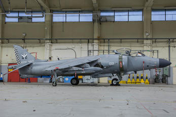 ZH796 - Royal Navy British Aerospace Sea Harrier FA.2