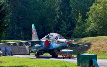 82 - Belarus - Air Force Sukhoi Su-25UB