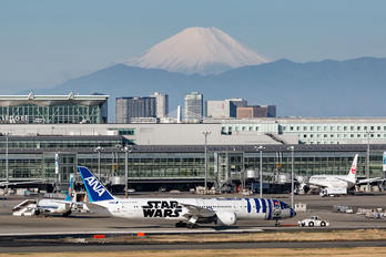 JA873A - ANA - All Nippon Airways - Airport Overview - Overall View