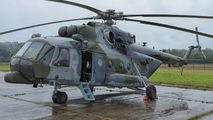 9825 - Czech - Air Force Mil Mi-171 aircraft