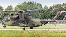 84 + 87 - Germany - Army Sikorsky CH-53G Sea Stallion aircraft