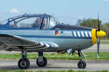 D-EGEI - Private Piaggio P.149 (all models)
