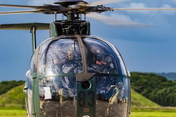 31283 - Japan - Ground Self Defense Force Kawasaki OH-6