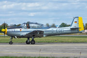 D-EGEI - Private Piaggio P.149 (all models) aircraft