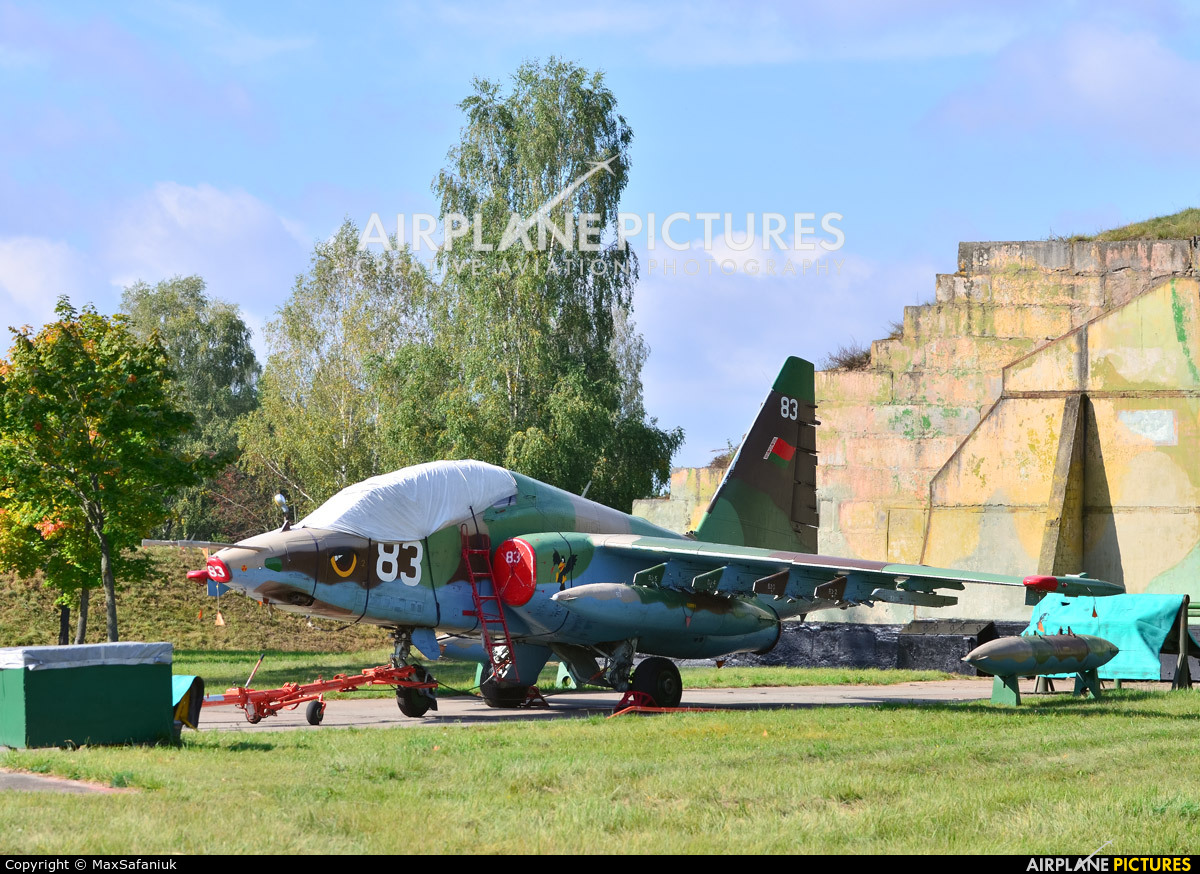 Belarus - Air Force 83 aircraft at Undisclosed location