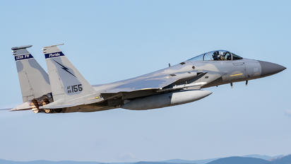86-0155 - USA - Air National Guard McDonnell Douglas F-15C Eagle