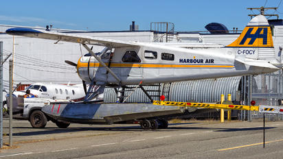 C-FOCY - Harbour Air de Havilland Canada DHC-2 Beaver